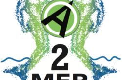 #2Mermen